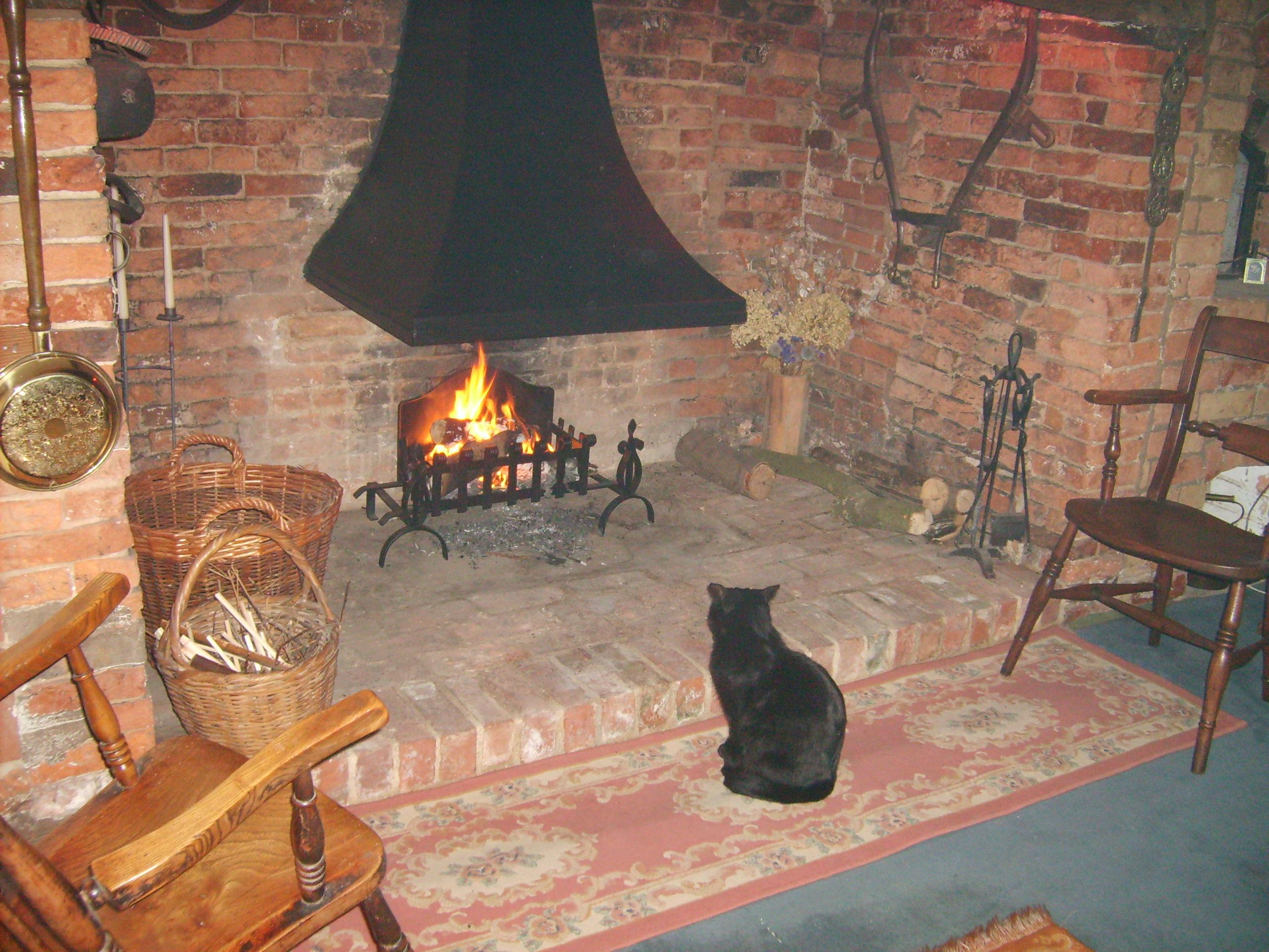 Inglenook Canopy and F1 Fire basket with Dogs